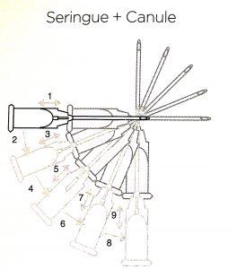 Seringue Canule